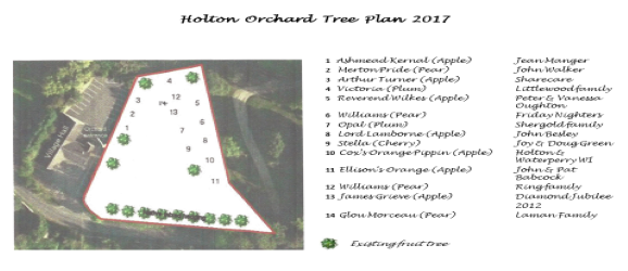 Holton Orchard Map of Trees